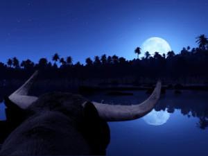 Que significa cada luna en Tauro