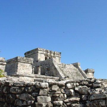 El horóscopo de los Mayas: ¿Sabes cómo son las ardillas?