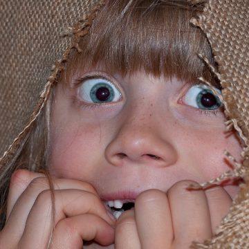 ¿Cuáles son las fobias de los signos?