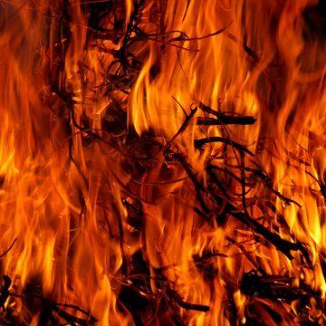 ¿Qué les disgusta a los signos de fuego?