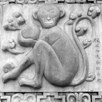 Horóscopo Chino: sus cinco elementos
